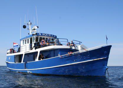 Aquilla sportvissen charter scheveningen